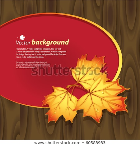 Artwork or frame with red and yellow maple leaves Stock photo © shawlinmohd