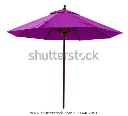 Paars parasol geïsoleerd witte strand hemel Stockfoto © ozaiachin