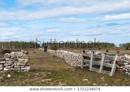 gate to the great alvar stock photo © olandsfokus
