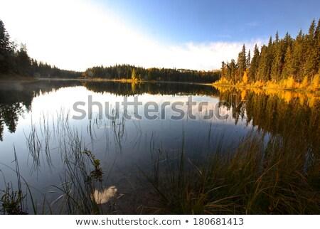 Water reflectie meer noordelijk saskatchewan Stockfoto © pictureguy