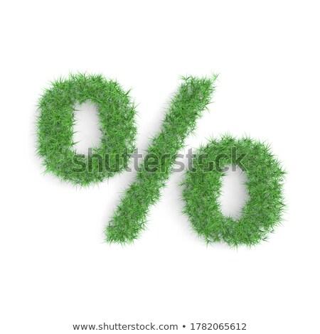 Green Percents Set With Grass Stock photo © adamson