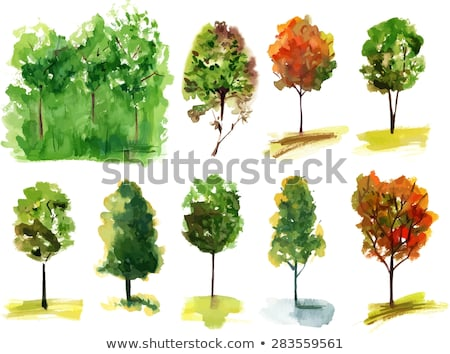 Forest with vivid colorful trees, vector illustration Stock photo © beaubelle