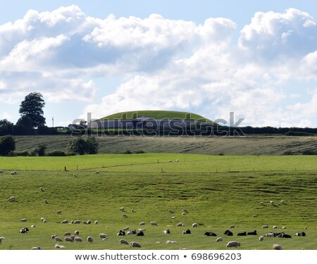 Newgrange, County Meath, Ireland Stock photo © phbcz
