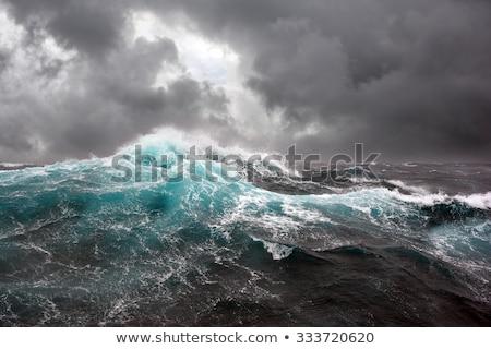 Rough sea Stock photo © ivonnewierink
