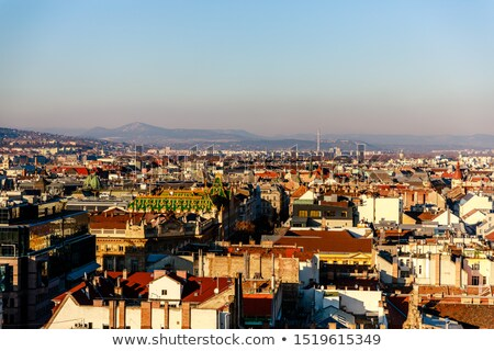 roofs of budapest stock photo © rognar