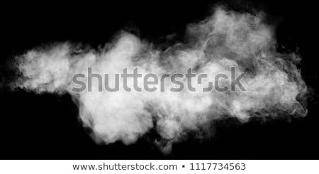 smoke on white Stock photo © arcoss