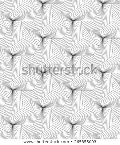 モノクロ · パターン · 白 · グレー · 対角線 · 平らでない - ストックフォト © zebra-finch