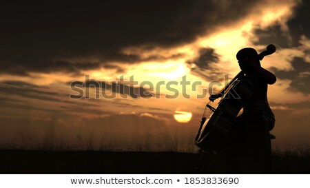 woman plays the double bass at sunset Stock photo © adrenalina