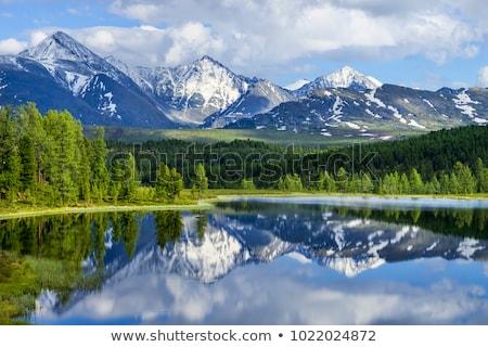 landscape in altai mountains stock photo © mikko