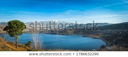 表示 高さ 湖 夏 風景 高い ストックフォト © Kotenko