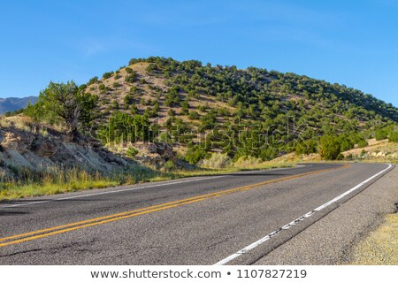 Stock photo: Bend in the Road, High Desert, New Mexico, USA