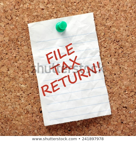 How To File Your Taxes Stock photo © cteconsulting