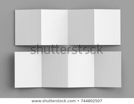 four fold brochure mockup design Stock photo © SArts