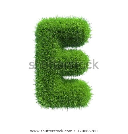 Grass font Letter E 3D Stock photo © djmilic