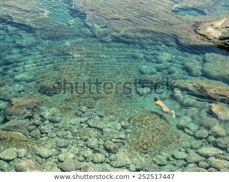 Ludzi snorkeling naturalnych kobieta rodziny dzieci Zdjęcia stock © meinzahn
