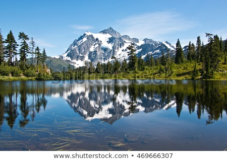 mount baker snoqualmie national forest baker lakes reflection stock photo © cboswell