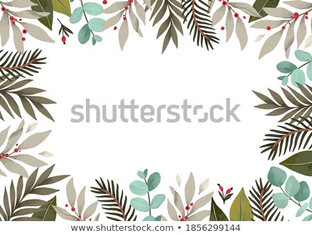 Holiday Holly and Greenery Background Stock photo © enterlinedesign