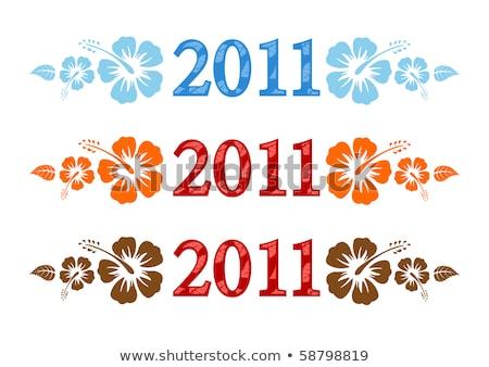 Ensemble vectoriel de texte 2011 avec Hibiscus Photo stock © Elisanth