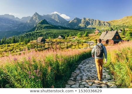 Caminhadas montanhas menina natureza montanha rocha Foto stock © przemekklos