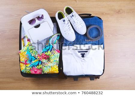 Suit case Stock photo © zzve