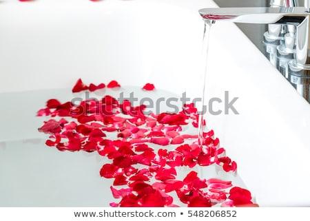 Rozenblaadjes bad bloem water spa Stockfoto © zzve