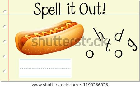 Varázsige angol szó hotdog illusztráció iskola Stock fotó © bluering
