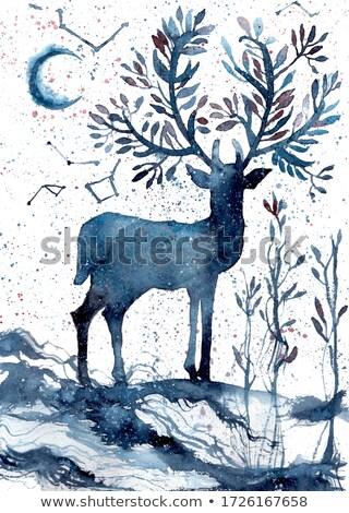 Christmas hand drawn boho reindeer greeting card Stock photo © cienpies