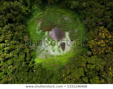 Vulcânico cratera trópicos grande ilha Havaí Foto stock © wildnerdpix