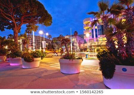 Palma beira-mar cidade noite ver francês Foto stock © xbrchx