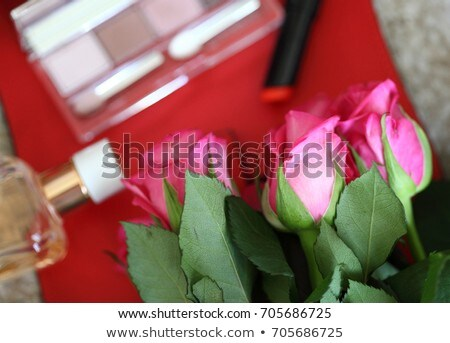 Eyeshadow palette and make-up brush on rose background, eye shad Stock photo © Anneleven