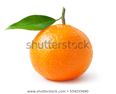 Fresh natural juicy tangerines, clementine fruit dessert for hea Stock photo © Anneleven