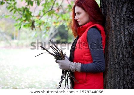 Kadın ağaç park kadın sağlıklı yaşam Stok fotoğraf © photography33