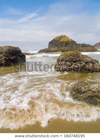 High Tide Coming in on the Oregon Coast Stock photo © Frankljr