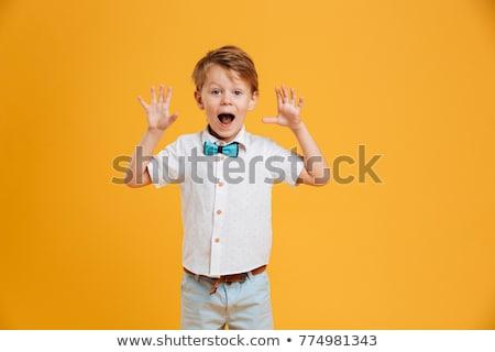 fiatal · lezser · fiú · pózol · izolált · fehér - stock fotó © hsfelix