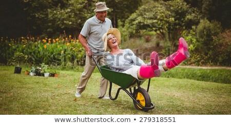 Casal de idosos jogar carrinho de mão jardim amor Foto stock © wavebreak_media