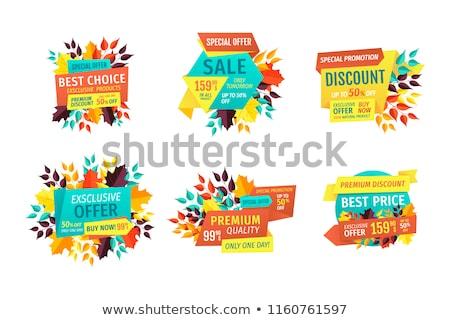 seasonal autumn sale and discount emblems set stock photo © robuart