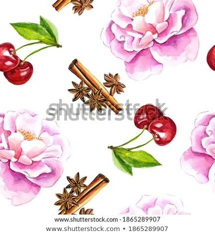 Acuarela canela cereza rojo restaurante comer Foto stock © ConceptCafe
