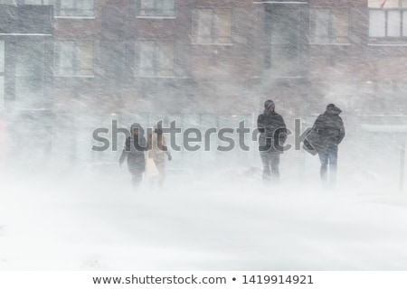 Severe winter weather in the mountains Stock photo © Kotenko