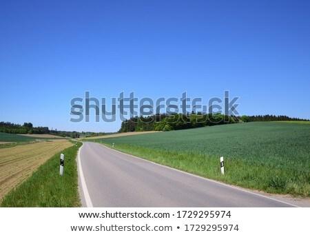 孤独 · 道路 · 道路 · 旅行 · アスファルト - ストックフォト © 3523studio