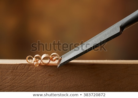 old molding plane with shavings  Stock photo © Zerbor