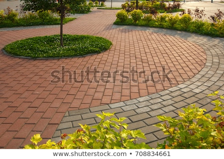 Brick Paving Stock photo © kitch