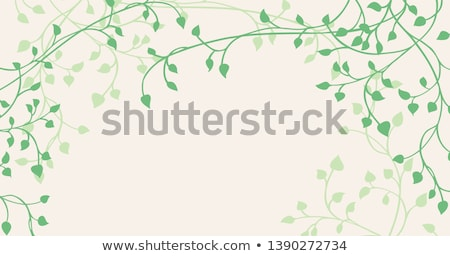 Ivy Background Stock photo © cosma