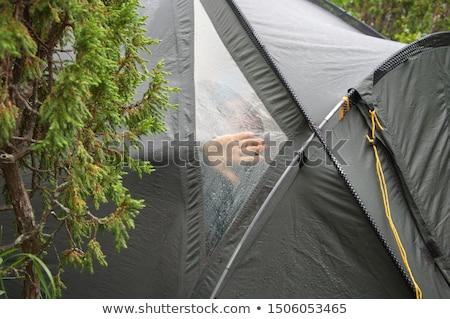 kilátás · bent · sátor · ki · erdő · tavasz - stock fotó © bmonteny