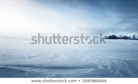 Snow-covered surface.  Stock photo © All32