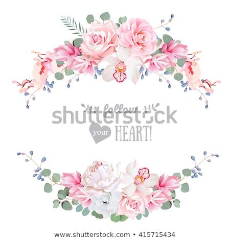 Peony pink round banner Stock photo © PurpleBird