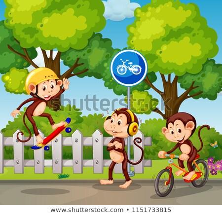 グループ 猿 実例 スポーツ デザイン ストックフォト © colematt