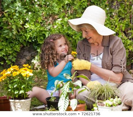 Stock fotó: Nagymama · lány · virágok · nyár · kert · kertészkedés