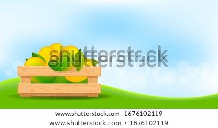 Gazda mangó fából készült szalag illusztráció fa Stock fotó © colematt