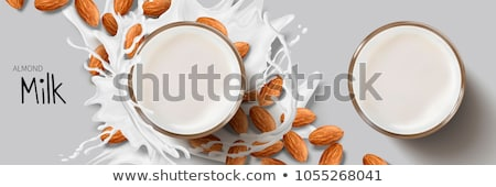 Veganistisch amandel melk illustratie container kom Stockfoto © lenm