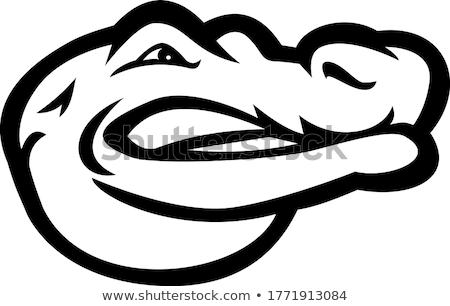Alligator gator hoofd zijaanzicht mascotte zwart wit Stockfoto © patrimonio